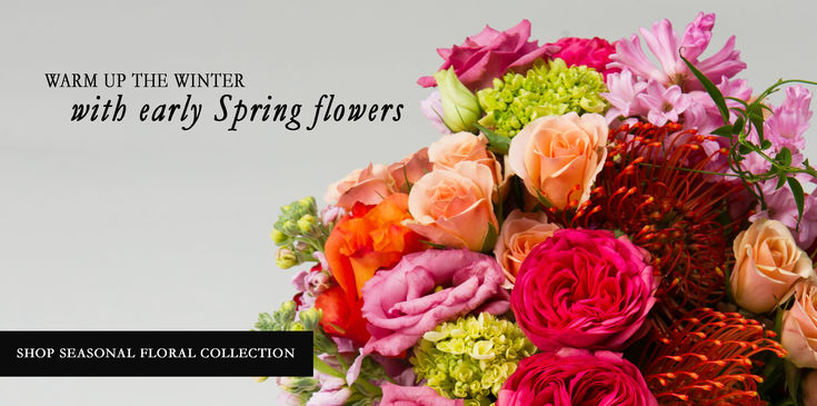 EARLY SPRING WINTER FLOWER ARRANGEMENTS COLLECTION DELIVERY PHILADELPHIA NJ ROBERTSON'S FLOWERS