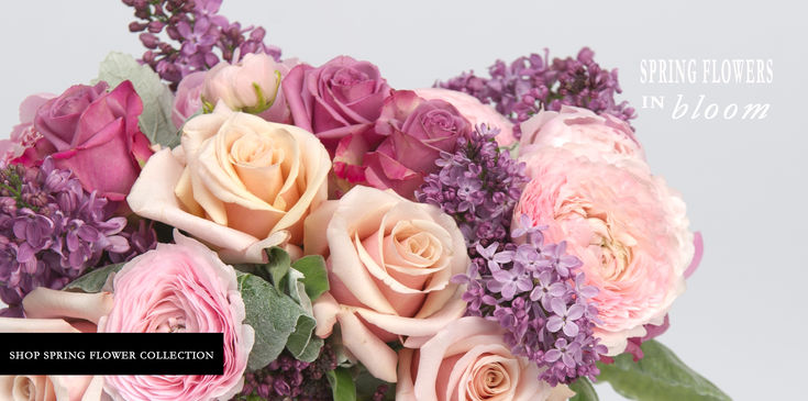 May Spring Flower Arrangements for delivery in Philadelphia